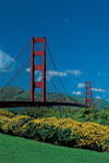 Americas Best Value Inn & Suites - San Francisco / Golden Gate CA
