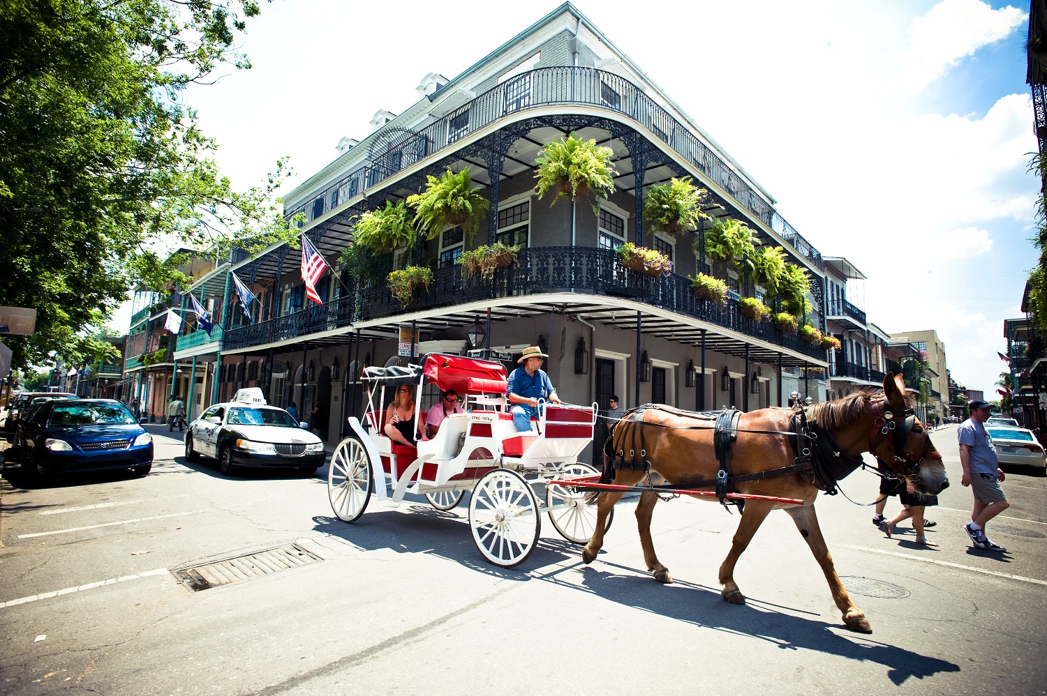 Hotel Royal - New Orleans LA